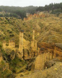 Imagen de Torre Torre