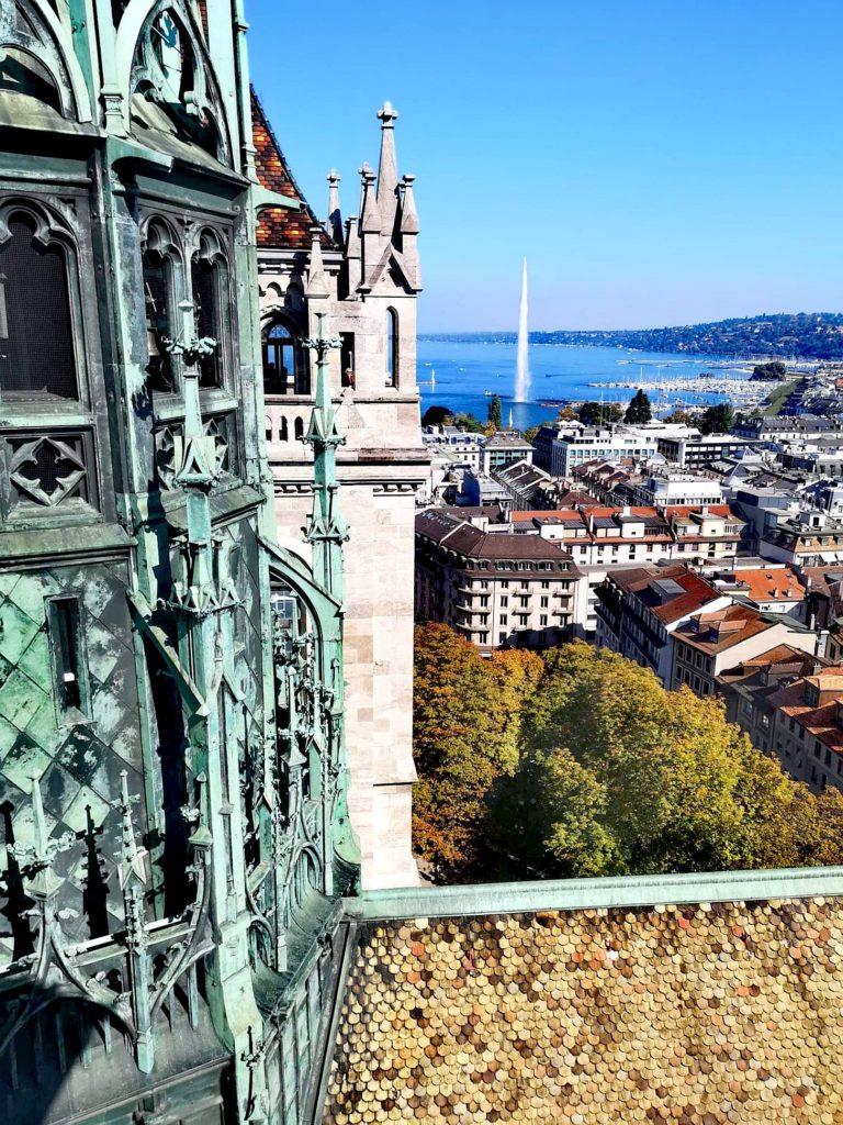 Vista desde la catedral