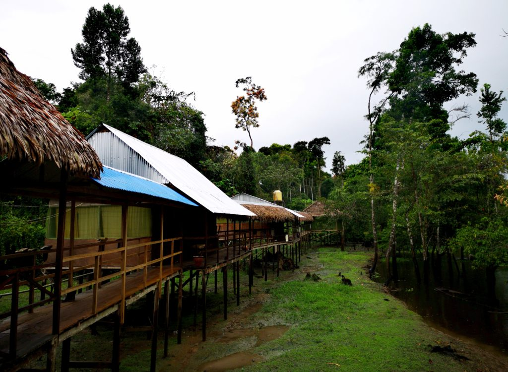 Turismo en Iquitos: Amazon Ecotours Lodge